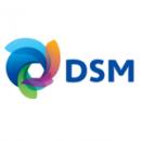 dsm_logo_new.7