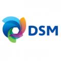 dsm_logo_new.83